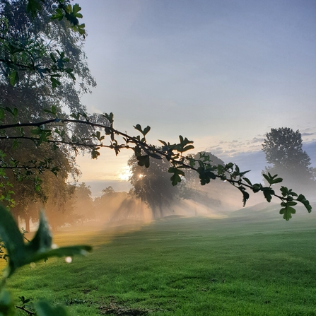 Photography Competition - Misty View